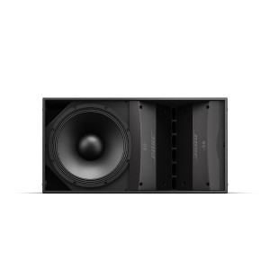 BOSE ArenaMatch AM10 Loudspeaker 60x10