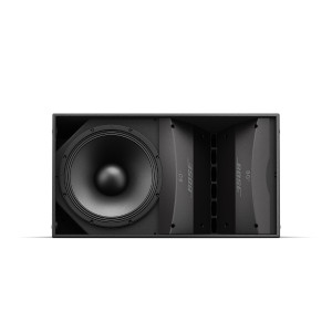 BOSE ArenaMatch AM20 Loudspeaker 60x20